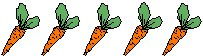 line of carrots