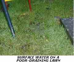 Surface Water On Poor Draining Soil